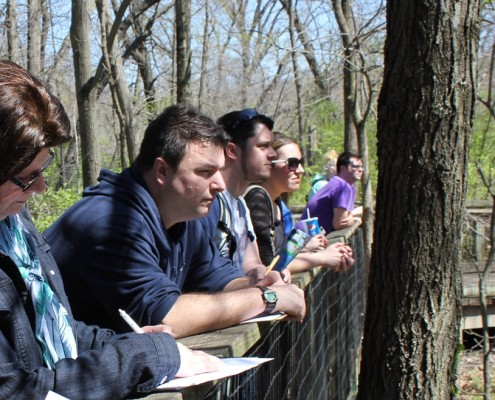 zoo observation